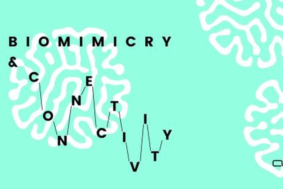 Biomimicry & Connectivity - Arts & Design Workshop / Design Week